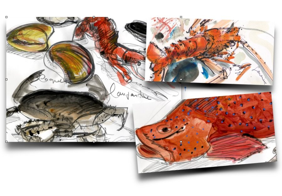 catalogue-crustaces-jpeg