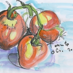 capture-tomates-jpeg